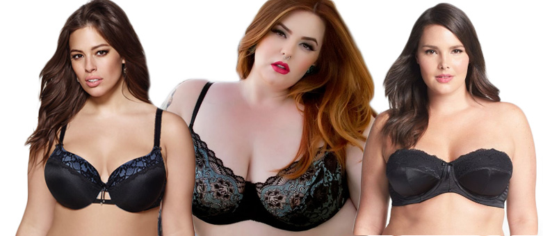 Learning About Plus-Size Bras and How to Get the Proper Fit
